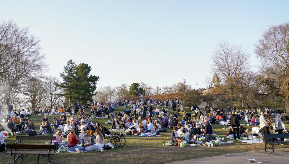 STAPPFULLT: Folk samlet seg i parken på St. Hanshaugen i Oslo lørdag kveld. Foto: Torstein Bøe / NTB
