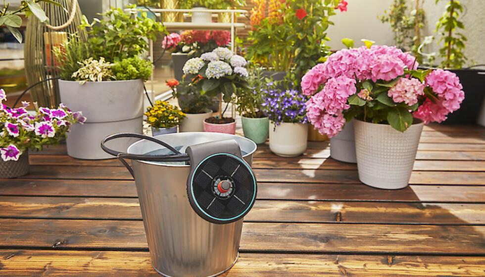 SOLCELLEVANNING: La solstrålene sørge for at blomstene og plantene får vann i sommer.