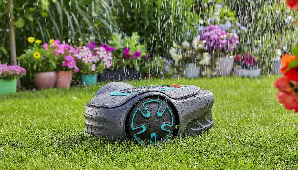 ROBOTHJELP: En robotgressklipper kan bli hageeierens beste venn i sommer! La roboten ta seg av plenen, så har du tid til å fikse noe annet.