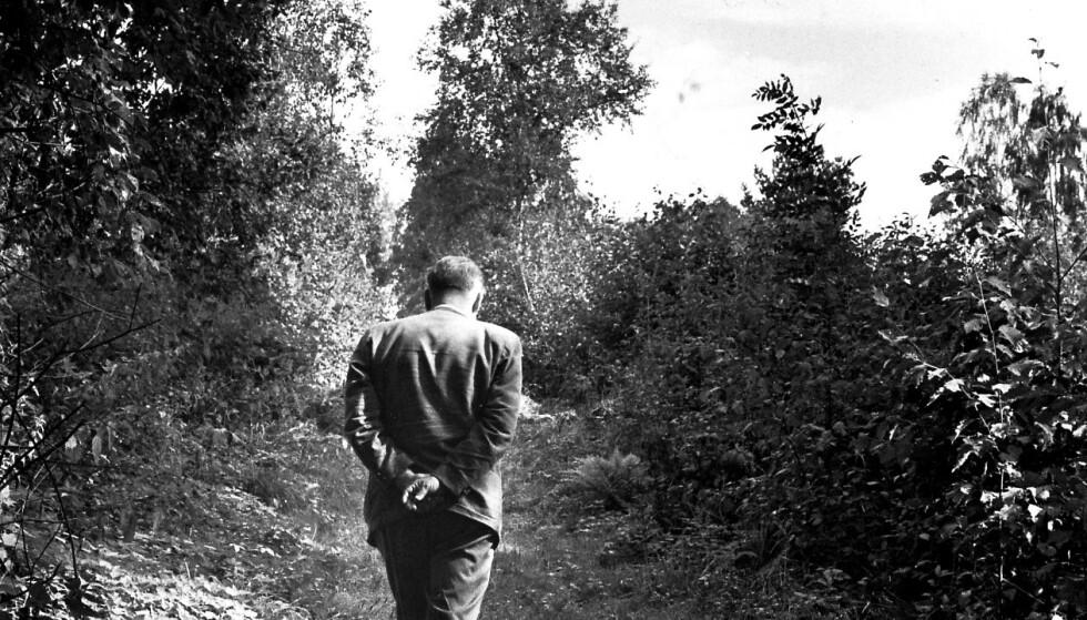 ALF PRØYSEN: Visedikter og husmannsgutt på gamle, nesten gjengrodde stier, opp sin hans barndoms vei - Prestvégen. Og ettertenksomheten melder seg, som fotografen her mesterlig har fanget opp. Foto: Johan Brun.