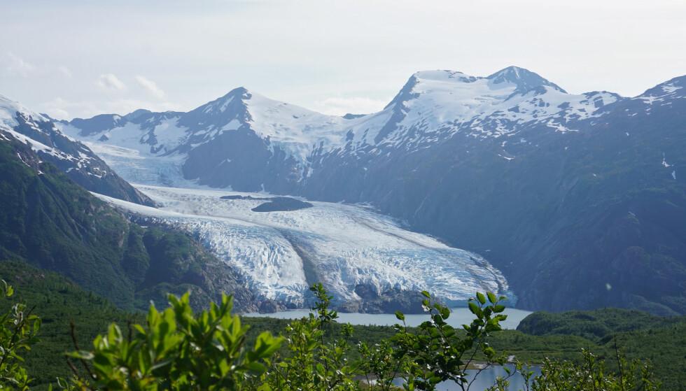 ISBRE: Portage-breen i Chugach National Forest i Alaska. Foto: Reuters / NTB.