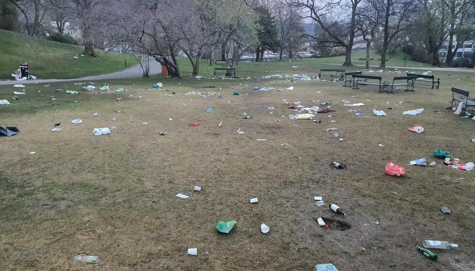 INNTRYKK: All søpla som har blitt forlatt i parken gjør inntrykk, sier seksjonsleder for veidrift Arild Gundersen i Bymiljøetaten. Foto: Løvaas Maskin as / Bymiljøetaten
