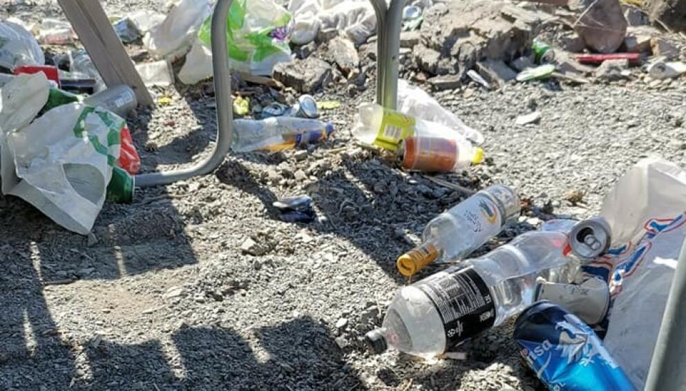 FORSØPLING: På bildet ser man noe av søppelet som ble funnet langs Mjøsa lørdag 1. mai. Foto: Privat