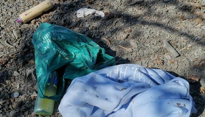ULIKE TYPER SØPPEL: Lise Enger kom over mye forskjellig søppel ved Skurven, like utenfor Helgøya. Foto: Privat