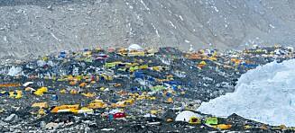 Benekter corona-smitte på Everest
