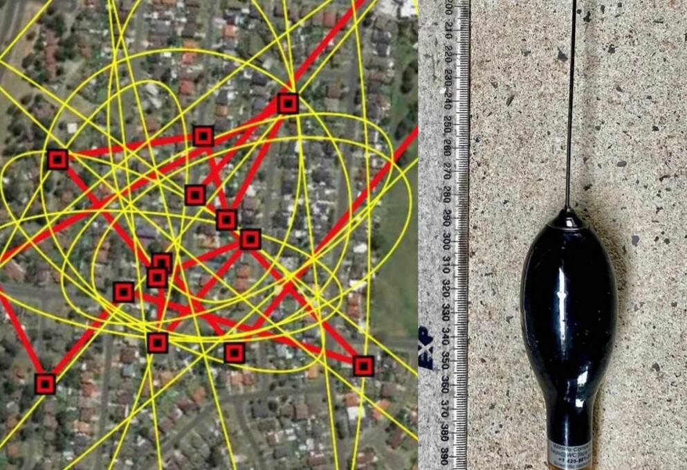 FULGTE HAIEN: Forskerne kunne se hvordan GPS-taggen forflyttet seg på skolen. Foto: NSW Sharksmart Instagram