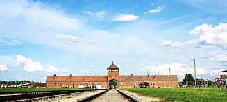 Beklager Auschwitz-anmeldelse