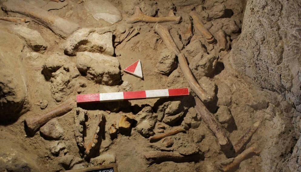 OPPSIKTSVEKKENDE FUNN: Arkeologer har funnet beinrester av ni neandertalere i en hule i Italia. Foto: Italias kulturdepartement / AP / NTB.