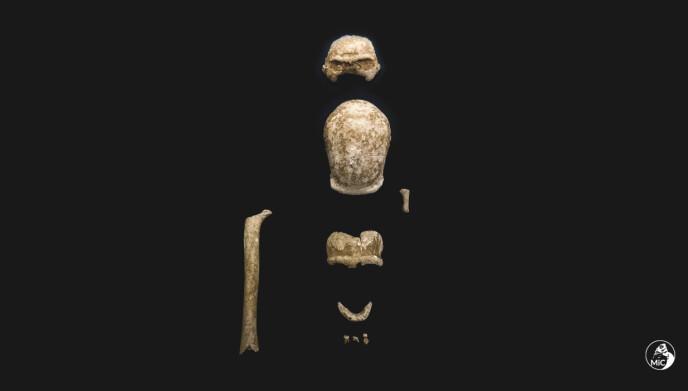 HULE: Funnet inkluderte både hodeskaller og ødelagte kjevebein. Foto: Italias kulturdepartement / AP / NTB.