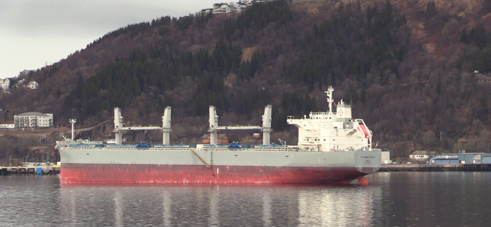 EN DØD - 16 SMITTET: Malmskipet IVS «Pebble Beach» fra Manila har vært oppankret ved inngangen til Narvik havn siden 5. mai. Og må fortsette med det etter krav fra helsemyndighetene og Sjøfartsdirektoratert. Foto: Kjetil Moe.