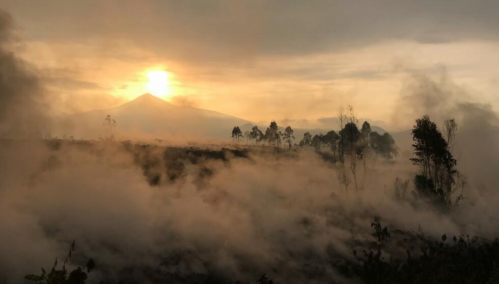 FARLIG VULKAN: Nyiragongo-fjellet med sin vulkan er en av verdens farligste. I 2002 døde over 150 mennesker av utbruddet. Nå er den i gang igjen. Over hundre barn er savnet. Foto: Reuters / NTB