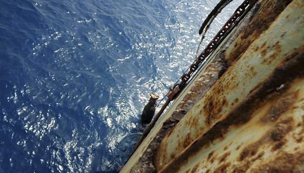 RUSTER: I sin tid var den store oljetankeren FSO Safer et velfungerende skip, men nå er rusten i ferd med å ta over. Når du vet at det er over én million fat olje inni båten, er det god grunn til bekymring. Foto: Ap / NTB