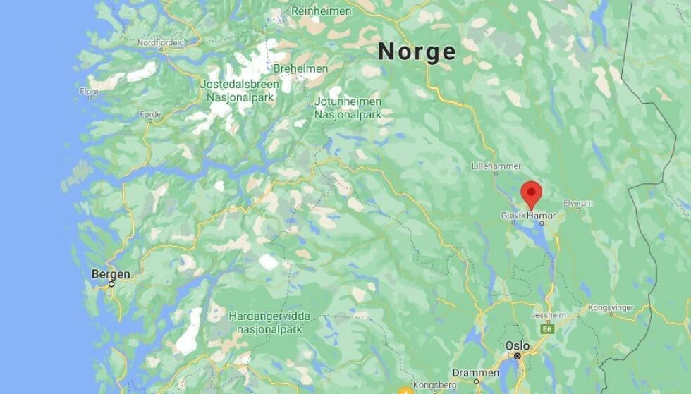 DØDE: Et barn døde etter det som skal være angrep fra to hunder i Brumunddal lørdag. Foto: Google Maps