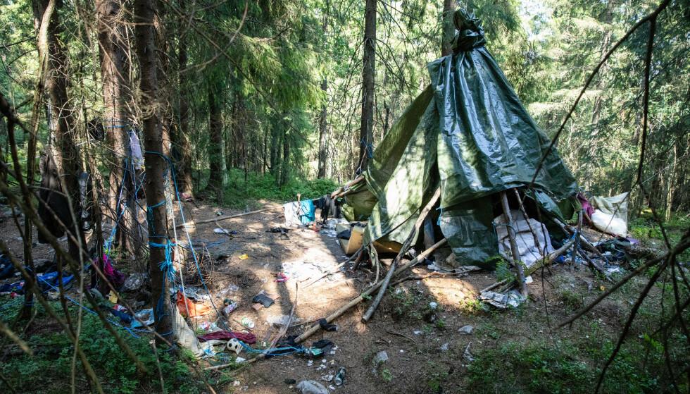 BODDE I SKOGEN: Den tiltalte mannen bodde i skogen i Maridalen, og ble påtruffet i nærheten av der den døde mannen ble funnet. Foto: Audun Braastad / NTB