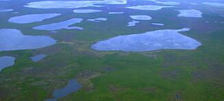 Fant 24 000 år gammel Sibir-mark