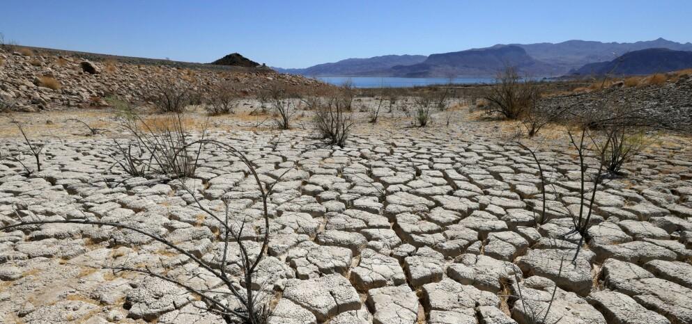 TØRKE: Lake Mead, Nevada kan nå ny varmerekord de neste dagene. Foto: Getty Images/AFP/NTB