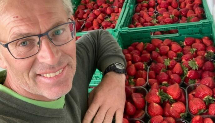 ÅRETS FØRSTE: Her har jordbærbonden akkurat lasset årets første jordbærkasser inn i bilen. Foto: Privat.