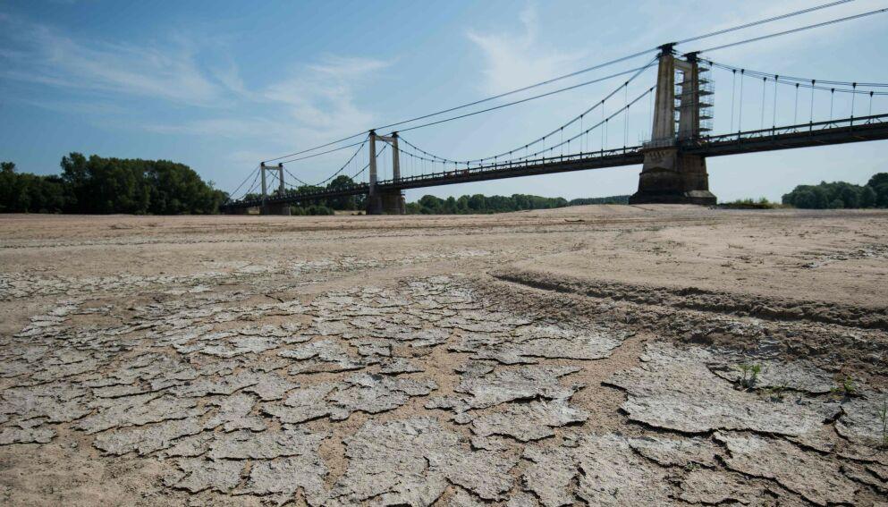NY RAPPORT: FN oppfordrer til å ta umiddelbare grep mot konsekvensene av tørke. Her fra et tørt område langs Frankrikes lengste elv, Loire, sommeren 2019. Foto: Loic Venance / AFP / NTB