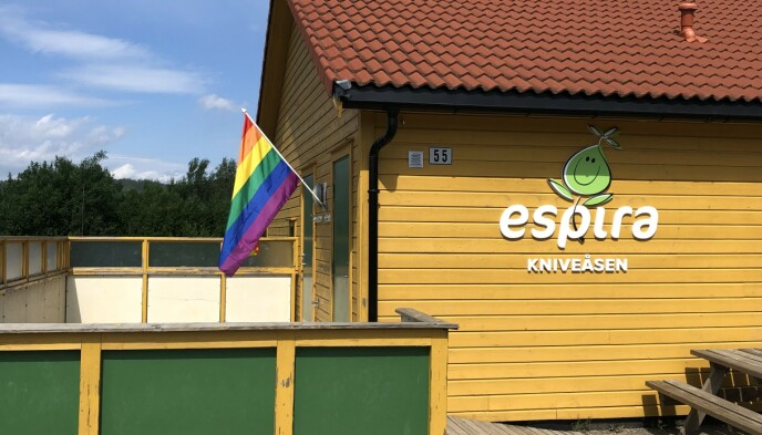 BARNEHAGER: Flere barnehager i Åskollen har hengt opp pride-flagg. Foto: Privat