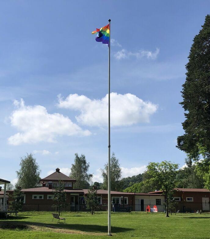 STØTTEERKLÆRING: Hele Åskollen I Drammen er nå fylt med pride-flagg som en støtteerklæring mot dem som har opplevd å få flagget sitt revet ned. Foto: Privat