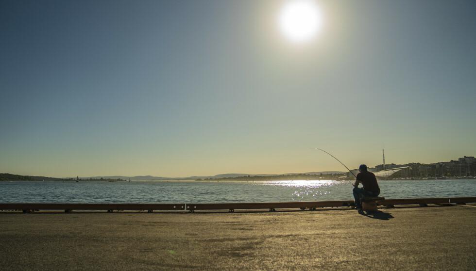 TOM FJORD: En fisker venter håpefullt på napp ved Vippetangen i Oslo. Oslofjorden er i ferd med å kveles av utslipp. Den en gang så rike fjorden, tømmes for fisk. Foto: Stian Lysberg Solum / NTB