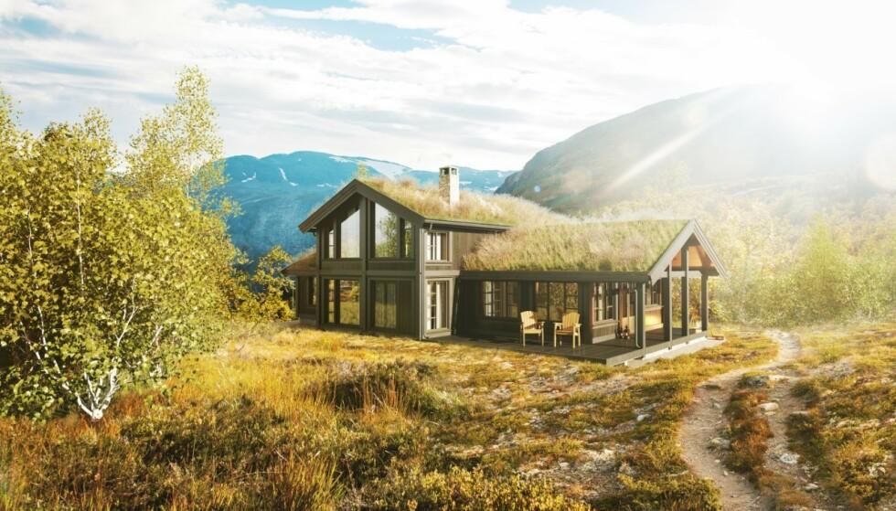 RÅ 156: I Rå-serien får du naturen inn gjennom vinduene og det robuste uttrykket.