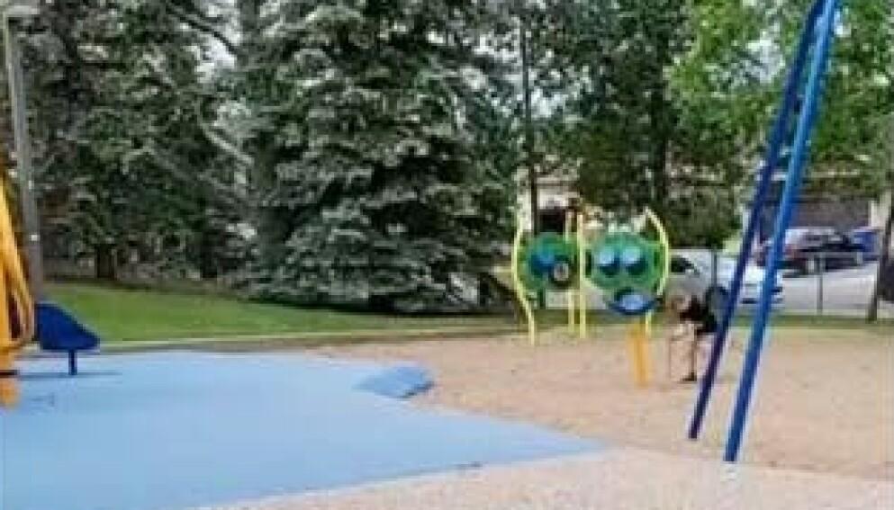 ALENE: Ingen av de inviterte dukket opp til bursdagsfesten i parken. Foto: Privat