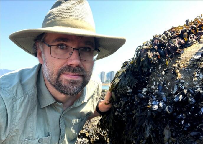 SJOKK: Marinebiolog Christopher Harley ble sjokkert da han fikk øye på den store mengde med døde skalldyr. Foto: Privat / Christopher Harley