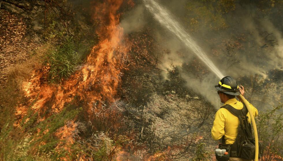 BRANN: Den såkalte El Dorado-brannen ble startet av en røykgranat, mener påtalemyndighetene. Foto: Will Lester / The Orange County Register / SCNG / AP / NTB