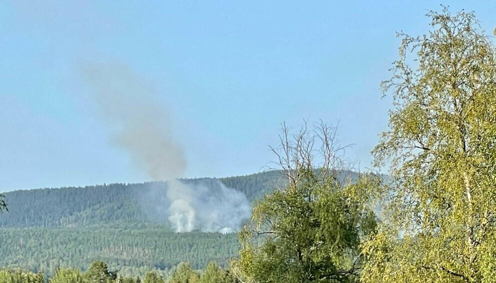 SKOGBRANN: 110-sentralen i Oslo meldte fredag ettermiddag om brann i skog og kratt flere steder langs Gjøvikbanen i Maridalen. Foto: Vegard Krüger / Dagbladet