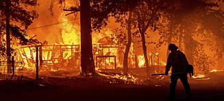 Tusener av brannmenn kjemper