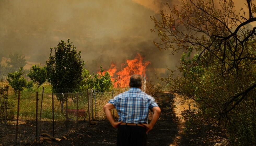 MINST FIRE DØDE: Her ser en mann på flammene som herjer nær Manavgat, torsdag. Minst fire personer er hittil meldt omkommet som følge av brannene som brøt ut onsdag. Foto: Ilyas AKENGIN / AFP