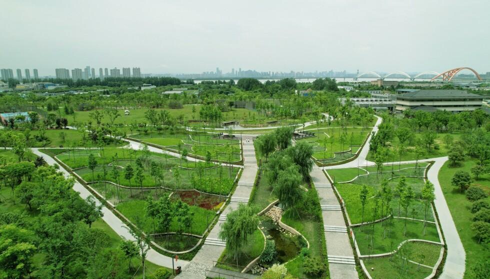 «SVAMP»: Kina bygger byer som skal fungere som svamper - for å ta unna store vannmasser. Her er en slik park i Hangzhou. Foto: Sipa Asia / Shutterstock / NTB