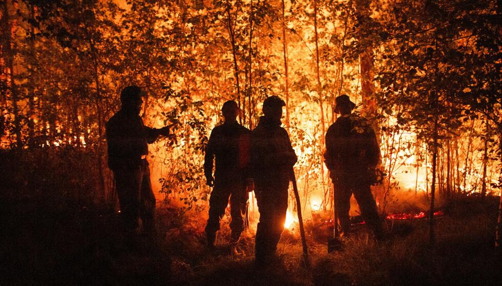 BRANNFOLK: Tusenvis av brannfolk kjemper mot flammene. Foto: Ivan Nikiforov / AP / NTB