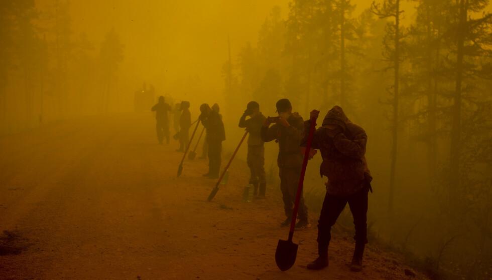 KJEMPER MOT FLAMMENE: Frivillige tar en pause i arbeidet med å slukke en av de mange skogbrannene i Sibir denne uka. Foto: AP Photo/Ivan Nikiforov/NTB