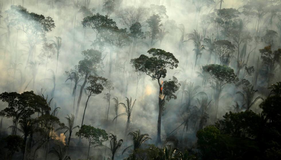 VERDEN BRENNER: Skogbrannene i Amazonas (bildet), California, Australia og deler av Europa har vært enorme de siste åra, og er blant klimaforskere et tegn på at verden er på vippepunktet. Drastiske tiltak må til. Foto: Reuters / NTB