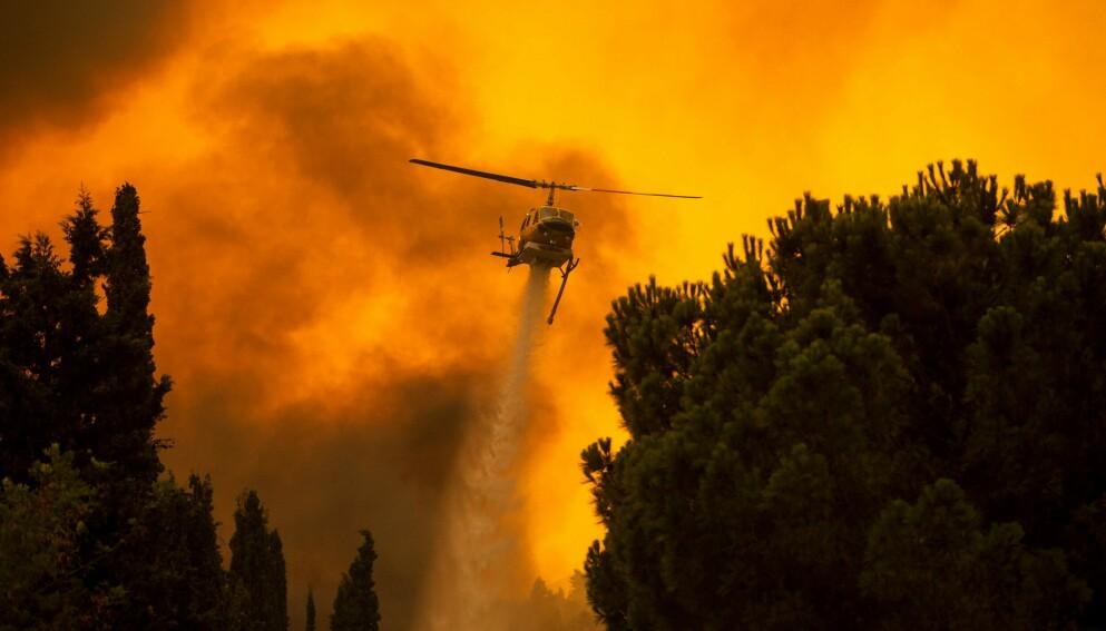 ENORME KREFTER. Et helikopter forsøker å slukke brannen i landsbyen Villa, nordvest for den greske hovedstaden Aten, i forrige måned. Foto: AFP / NTB