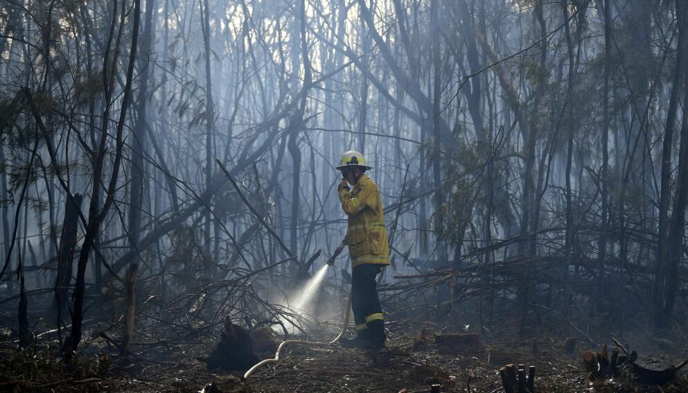 ENORME ØDELEGGELSER: Det er estimert at brannene som herjet i Australia fra november 2019 til januar 2020 slukte over 46 millioner dekar med land. Foto: Saeed Khan / AFP / NTB