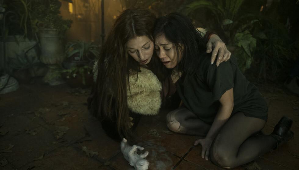 KATTUNGER: Heksa Boro (til venstre), spilt av Catherine Keener, får Lisa til å kaste opp kattunger. I episode fire går det imidlertid enda lenger. Foto: Sergei Bachlakov/Netlix