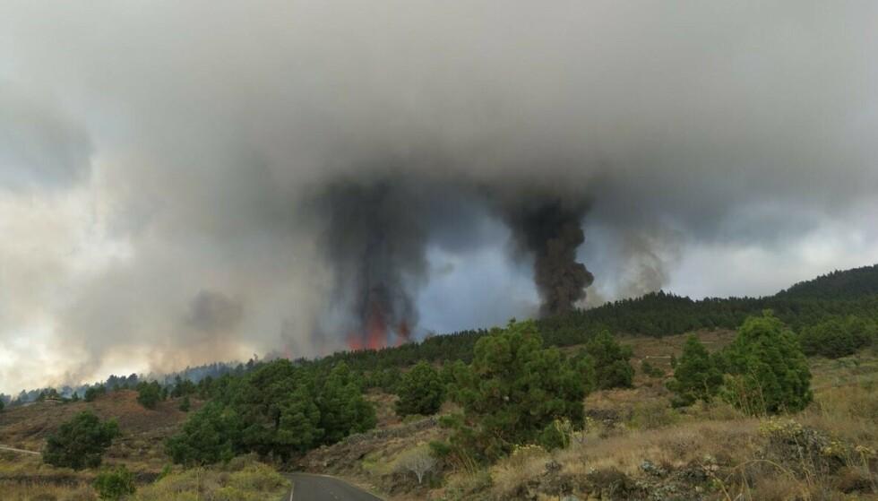 Fessure: in questa immagine scattata dal nostro collega Alba, si possono vedere sette diverse bocche da cui fuoriesce la lava, cosa molto comune durante le eruzioni in fessure vulcaniche come queste, ha scritto su Twitter l'istituto di ricerca INVOLCAN