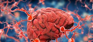 Kobler ADHD til alvorlig sykdom