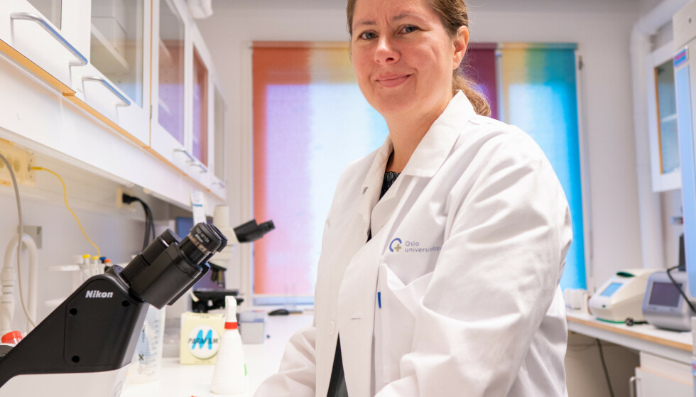 VAKSINERING: Immunolog Gunnveig Grødeland, mener en av årsakene til at Norge ligger bak Danmark med vaksineringen, er at danskene fikk i gang vaksineringen av ungdommene raskere. Foto: Universitetet i Oslo