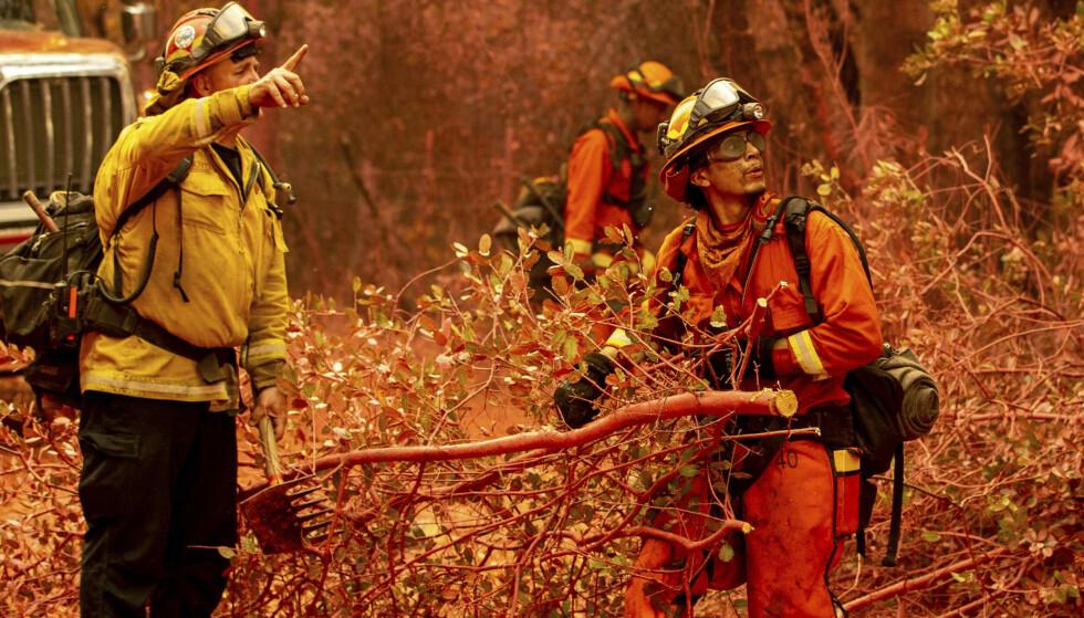 INNBITT KAMP: Et stort antall brannfolk er utkalt for å bekjempe flammene. Foto: Ethan Swope / AP / NTB