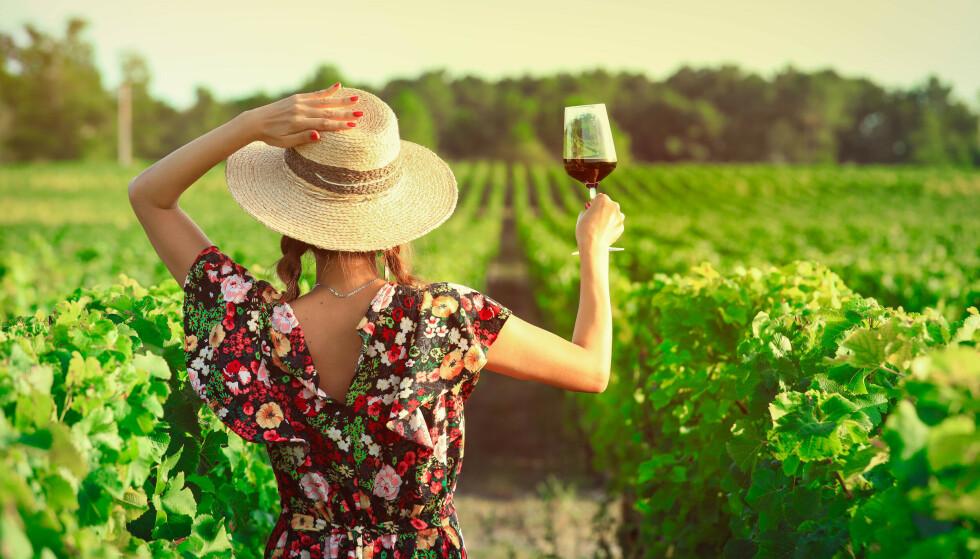 DRIKKEVINER: Naturvinene er på sitt beste saftige og leskende drikkeviner, men kan også I mange tilfeller være svært matvennlige. Foto: Shutterstock/NTB