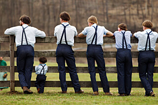 Image: Amish-sektens mørke hemmelighet