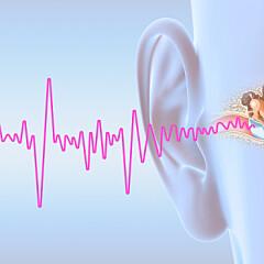 Image: Forskere: Ny behandling mot tinnitus