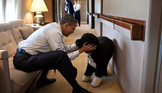 Image: Obama i sorg