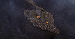 Image: Unnslapp lavaen: - Begynte å gråte