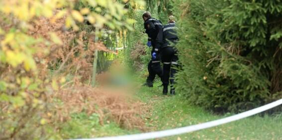 Image: Død mann funnet på sti